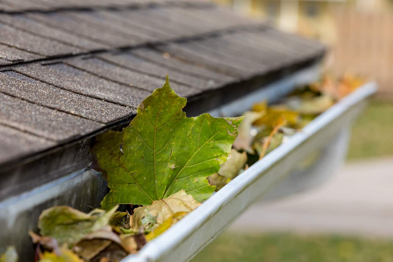Gutter Cleaning, Gutter Cleaning Raleigh NC