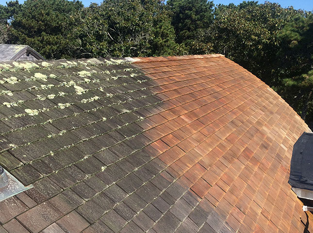 Before & After Roof Cleaning Services