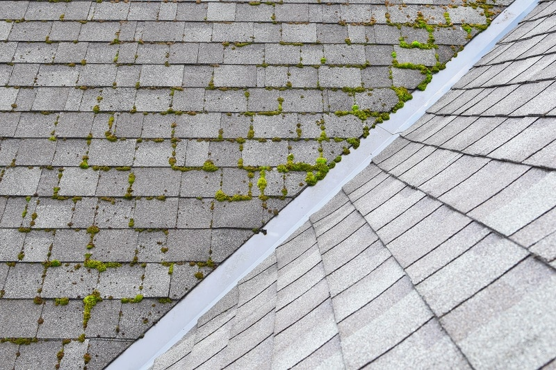 Roof Cleaning Service In Garner NC